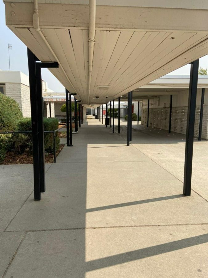 Campus pathway leading to FHS library, currently undergoing renovations